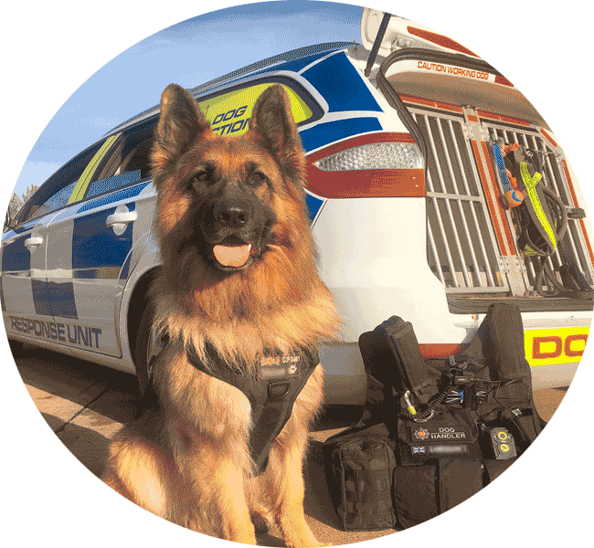 Guards Dog Security services